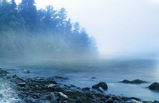 mist-1659115