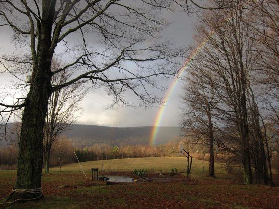 rainbow-2861987