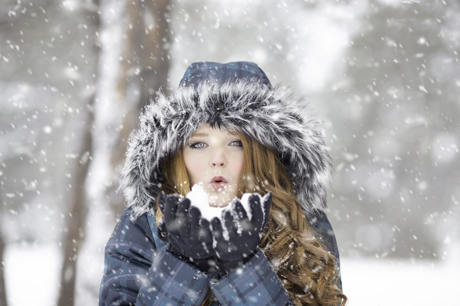 winter-1127201