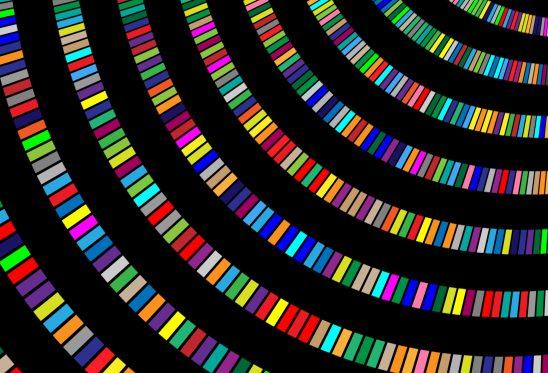 color-1093911