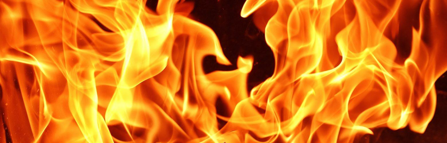 fire-2911041