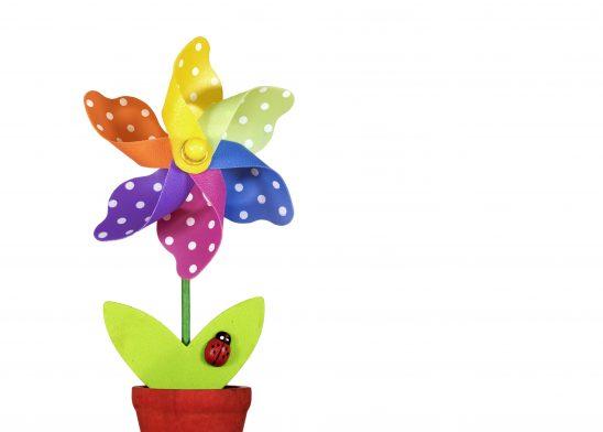 flower-1230509