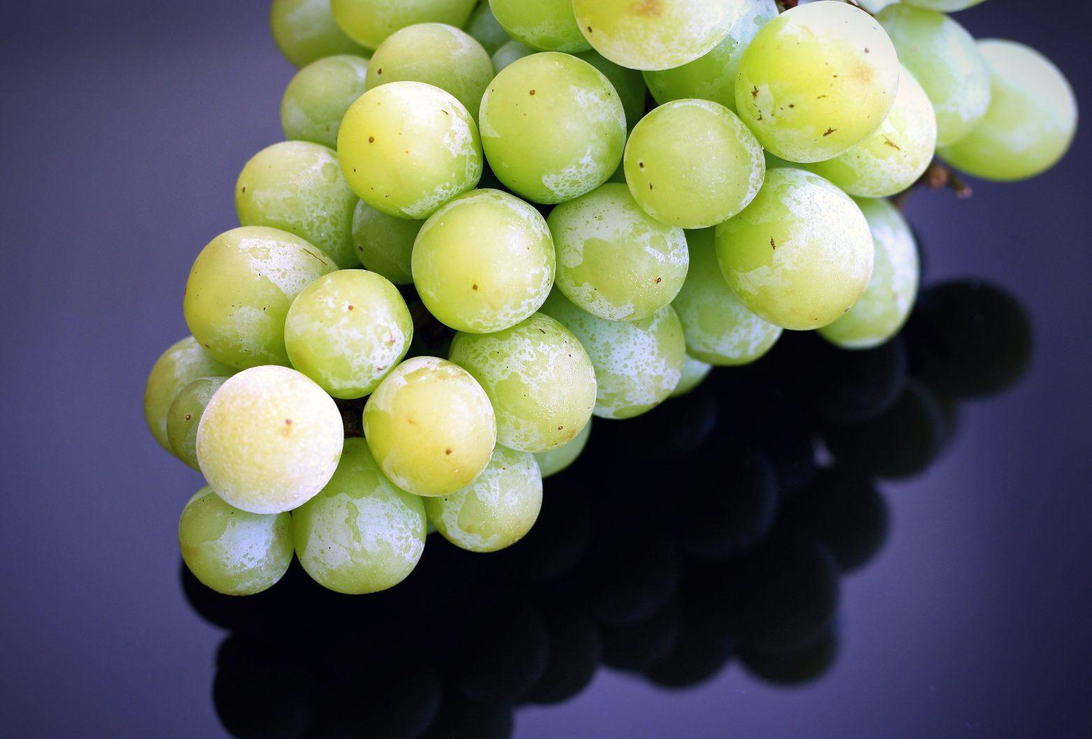 grapes-1476089