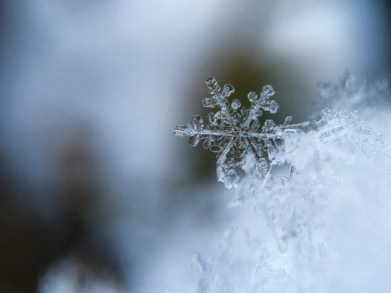 snowflake-1245748