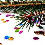 spruce-1040048