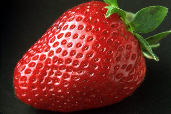 strawberry-82529