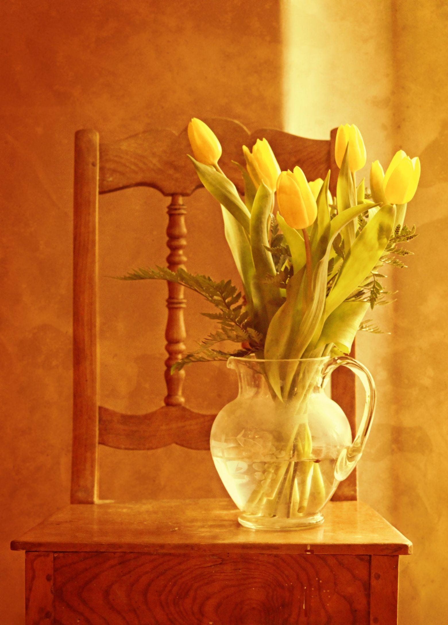 tulip-bouquet-1715054