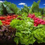vegetables-905382