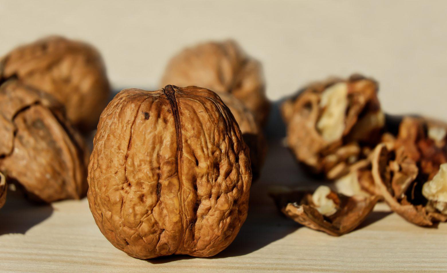 walnut-1739021