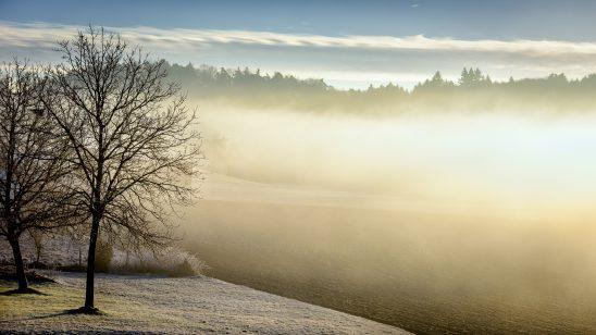 winter-598632