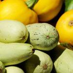 zucchini-1605792