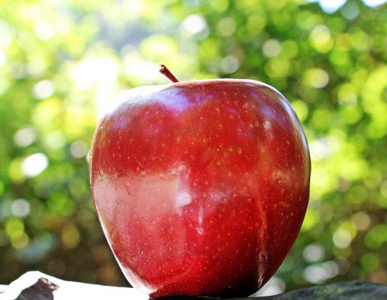 apple-1702316
