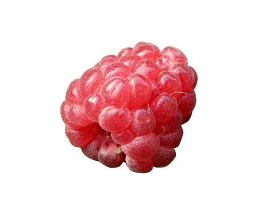 berry-211887