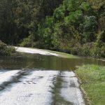 Wayne County Flooding 10.10.16 (5)