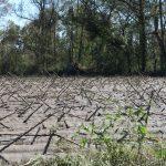 Wayne County Flooding 10.10.16 (6)