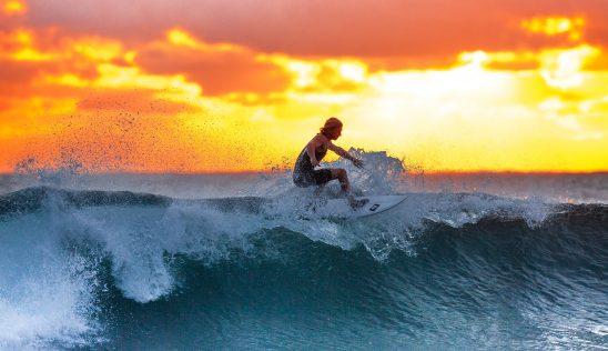 surfer-2212948