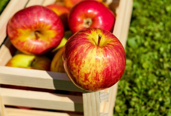 apple-1589874