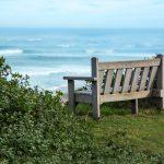 bench-2354745