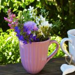 flowers-2333420