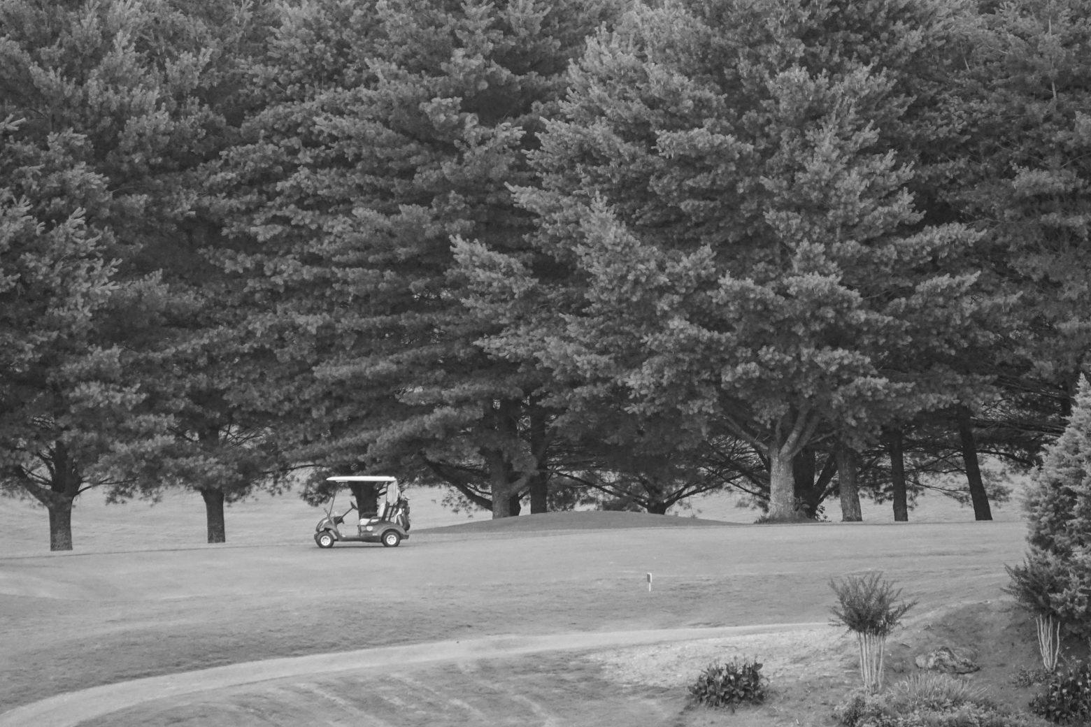 Apple Mountain Resort Golf Course – Clean Public Domain on car cart, box cart, 2002 chrysler gem cart,