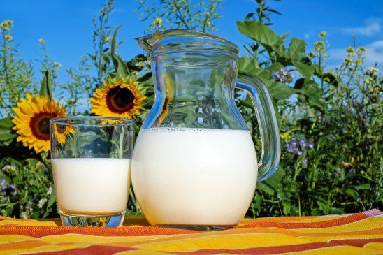 milk-2474993