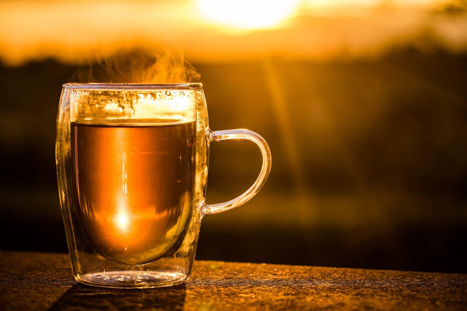 teacup-2324842