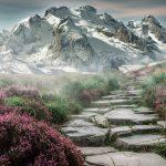 mountain-landscape-2031539