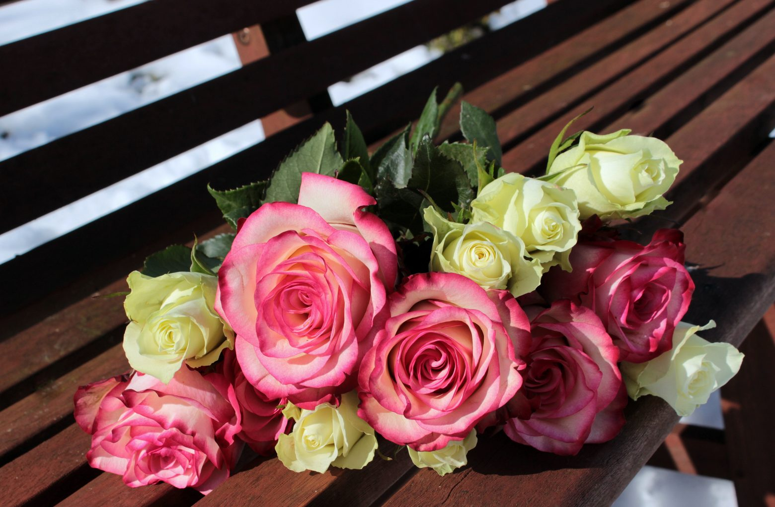 bouquet-of-roses-1246490