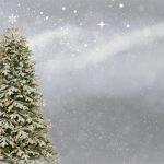 christmas-3006743