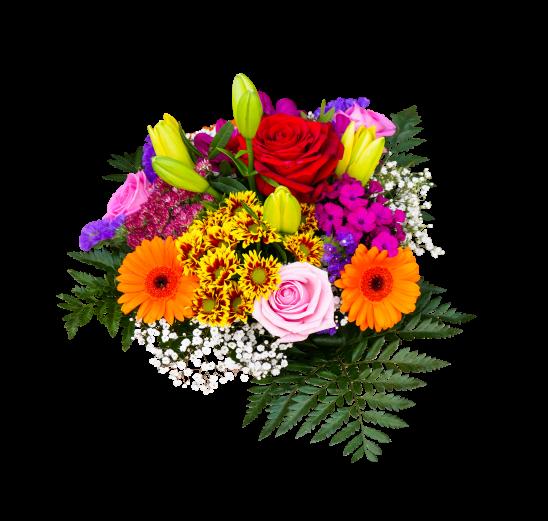 flowers-2845434
