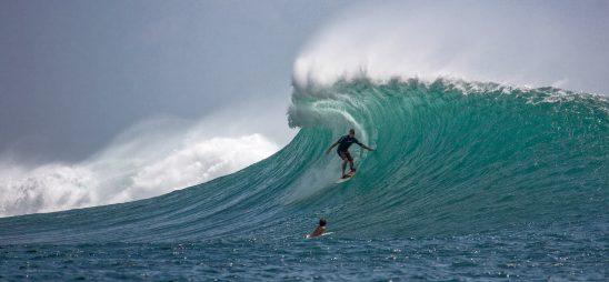 surfer-2193859