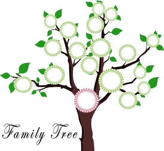 tree-1951473