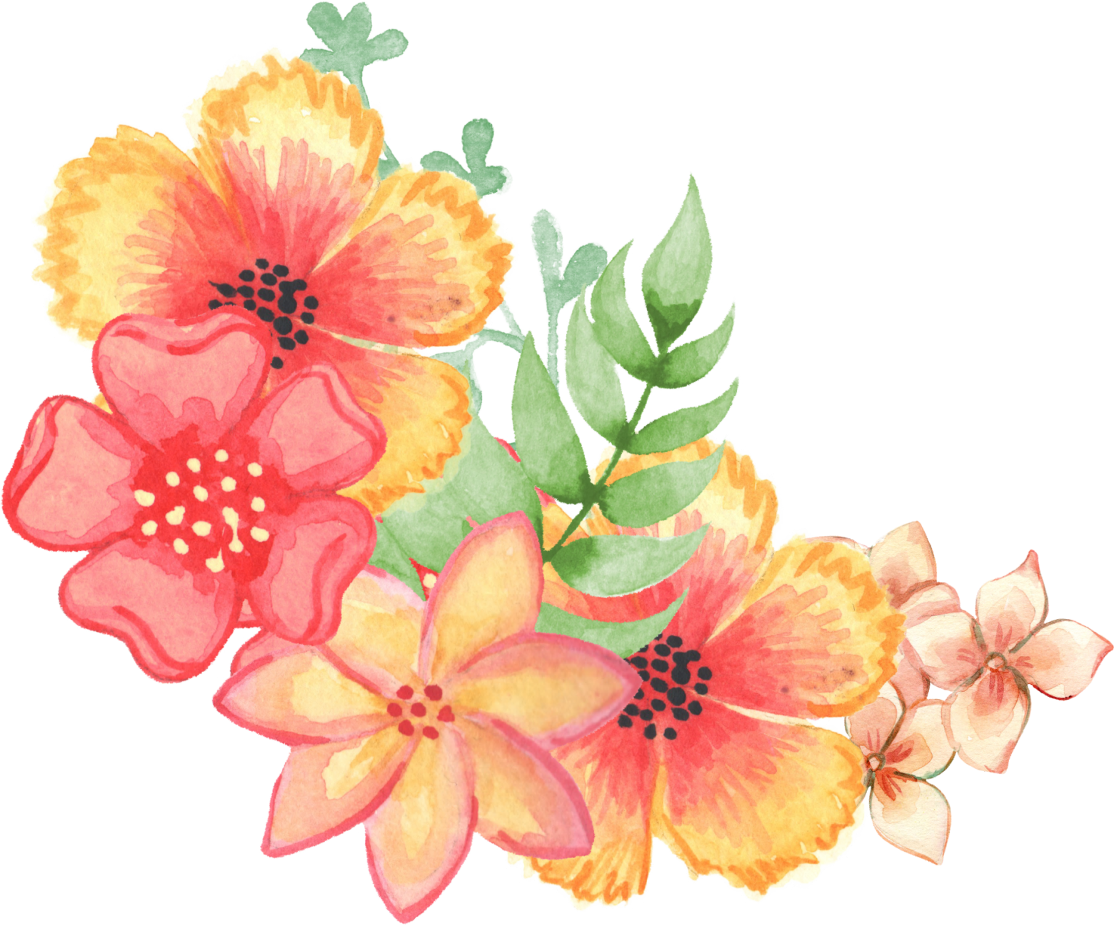 floral  decoration  embellishment  watercolor planet clipart plant clip art black and white