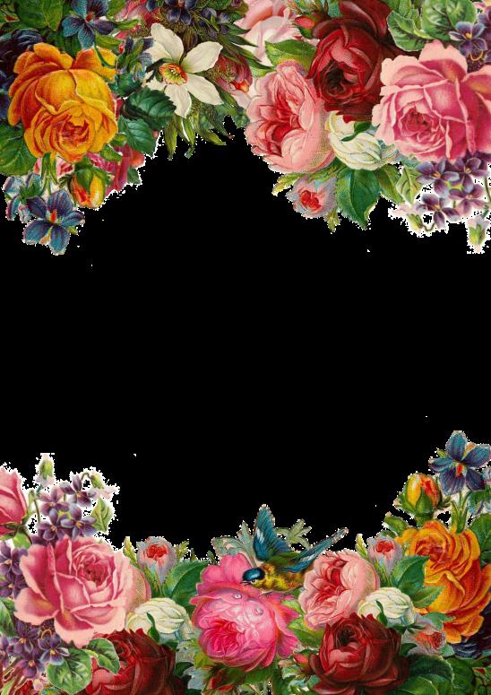 flower-1770191