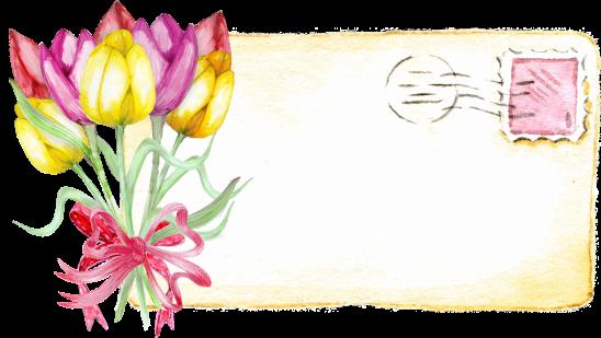 tulip-2664547