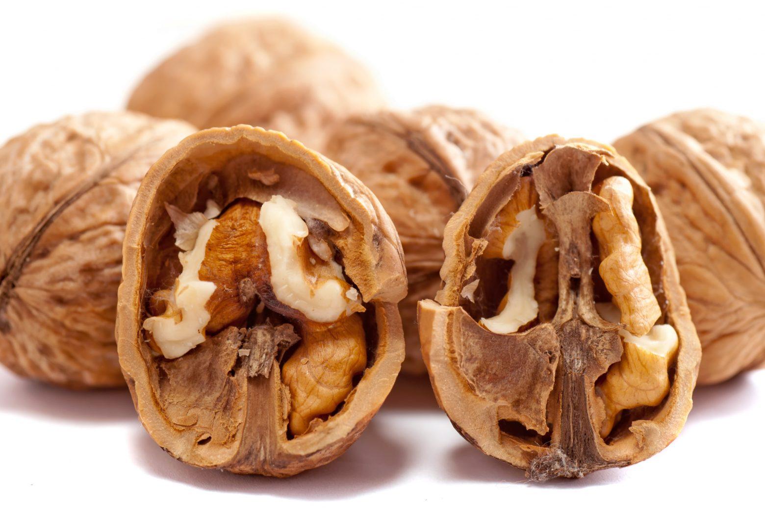 walnuts-2312506