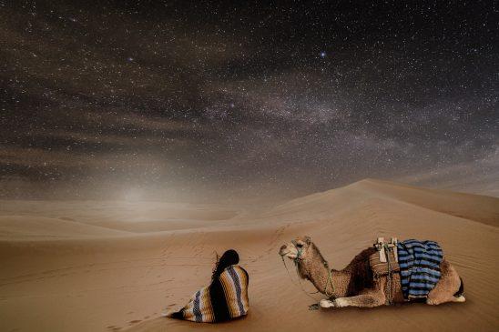 desert-2897107