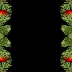 holidays-1814922