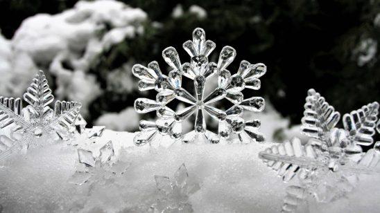 ice-3009009