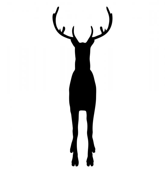 reindeer-2690235