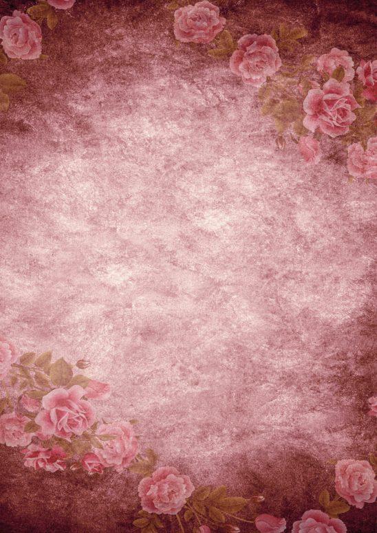 roses-2188534