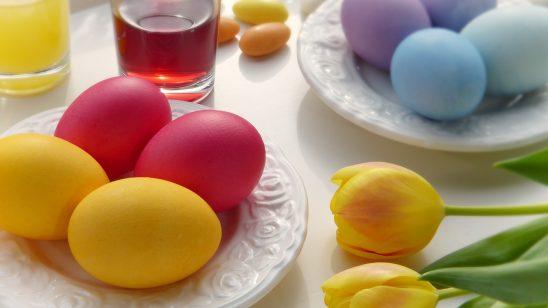 egg-3165476