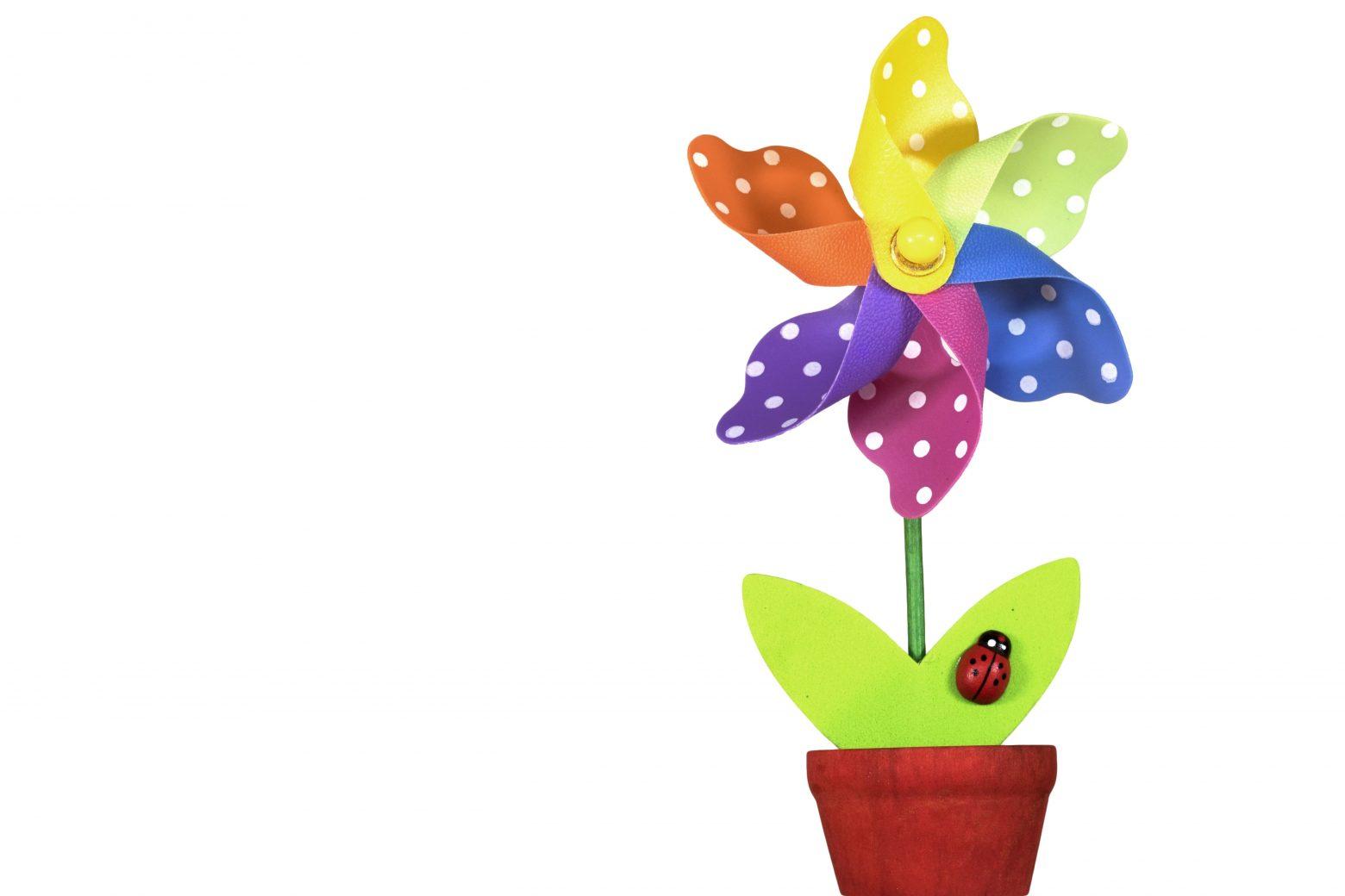flower-1230518