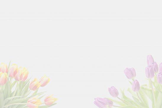 flower-2108648