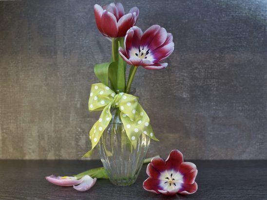 flower-3090965