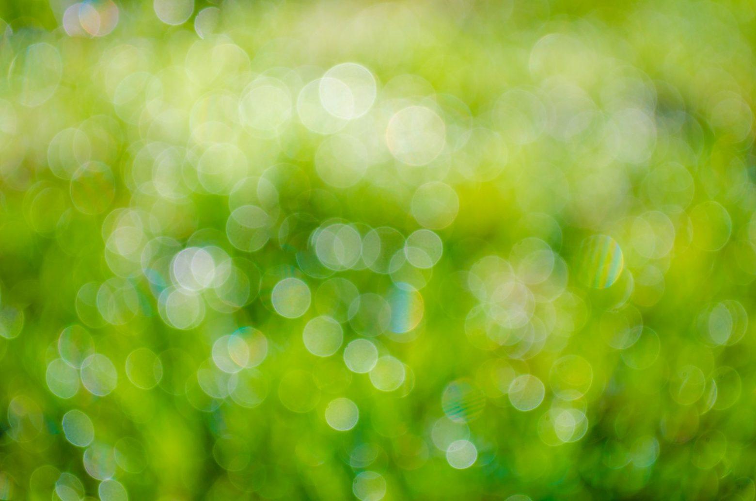 green-315275