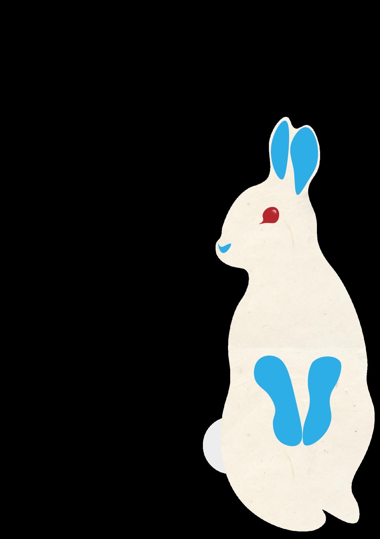 rabbit-3016870