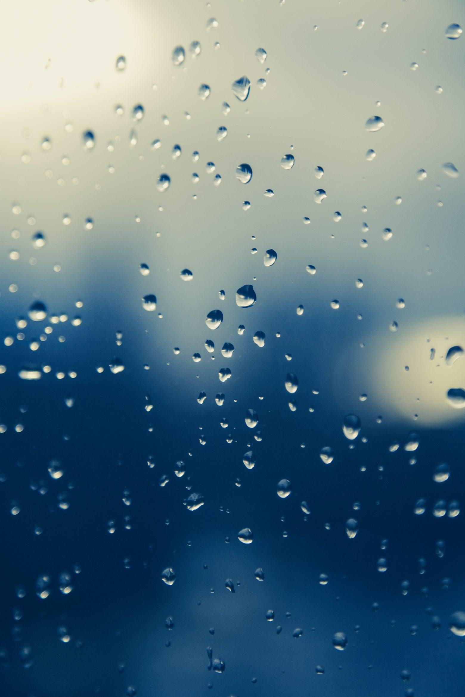 raindrop-1445835