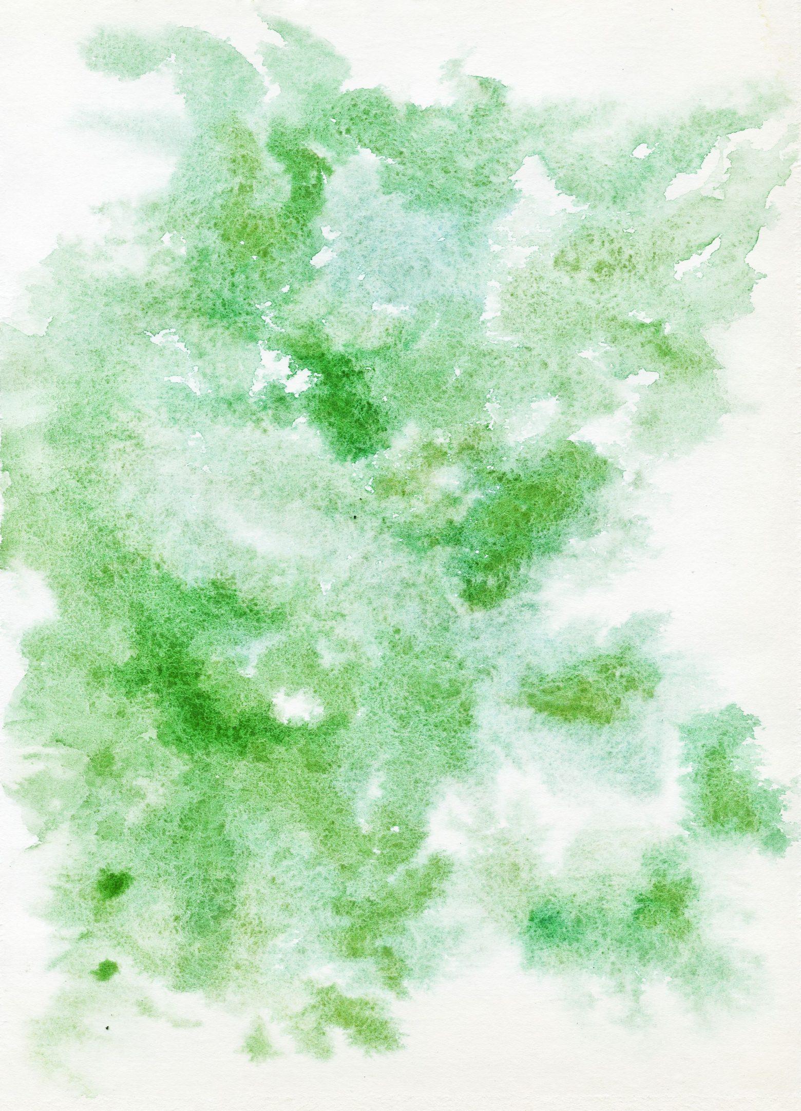 watercolor-1543790