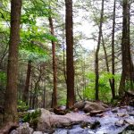 2015-10-01 Race Brook Falls Revisit 20 for CPD